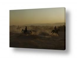 צילומים אייל ברטוב | מעגל רוכבים
