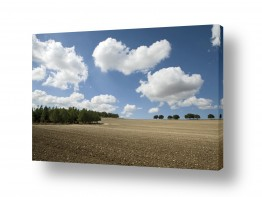 צילומים אייל ברטוב | עננים