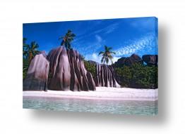 צילומים אייל ברטוב | חוף סיישל