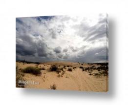 תמונות לפי נושאים ניצנים | עננים 2