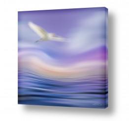 נושאים תמונות נופים נוף | מעוף