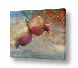 ציורים יהדות | Pomegranates