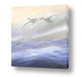 ציורים מים | יחד