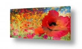 אבסטרקט מופשט אבסטרקט פרחוני ובוטני | פרחים