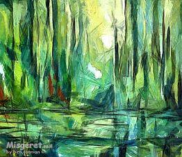 יער טרופי