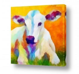 ציורים בעלי חיים | פרה חמודה