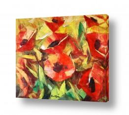 פרחים פרגים | האדומים הפרגים