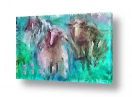 ציורים בעלי חיים | תמימות