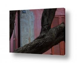 צילומים עירוני | הבית הורוד