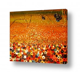 פרחים כלנית | גן האושר