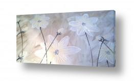 צמחים פרחים | חתונה