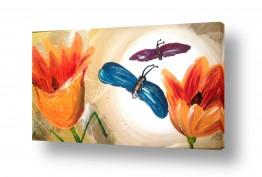 חרקים פרפר | שתי נשמות