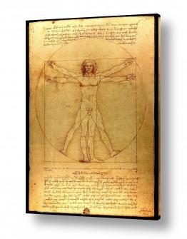 אמנים מפורסמים לאונרדו דה וינצי | האדם הוויטרובי