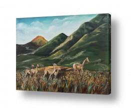 ציורים בעלי חיים | אילות באחו