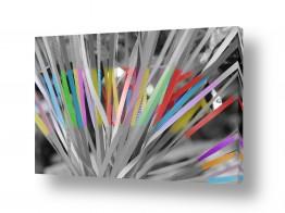 תמונות לפי נושאים סרטים | צבעים