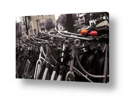 צילומים תחבורה | אופנים