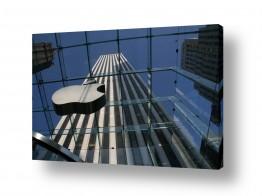 עולם ארצות הברית | תפוח הגדול