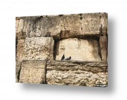 ירושלים הכותל המערבי | כותל