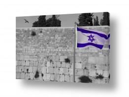 צילומים אלי נגר | דגל ישראל