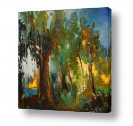 צמחים יער | חורשת האקליפטוס
