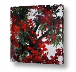 ציורים טבע דומם | אדום עז