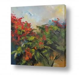 צמחים פרחים   אדום בסתיו