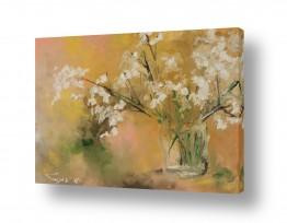 צמחים פרחים | שקוף לבן עדין