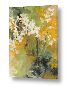 צמחים פרחים | שקוף נרקיסים