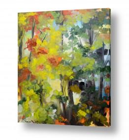תמונות לסלון | פריחת היער האדום