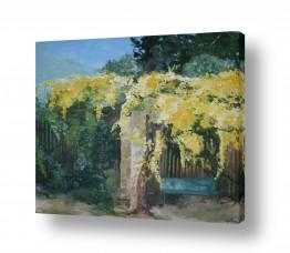 תמונות לפי נושאים חלום | ורדים בצהוב
