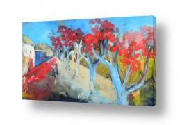 תמונות לפי נושאים נוף | עץ הדומים