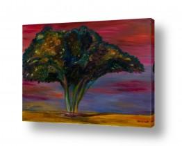אסתר חן-ברזילי אסתר חן-ברזילי - אמנות מהלב - המילים הפכו לצבעים - גזעים | עץ שיטה