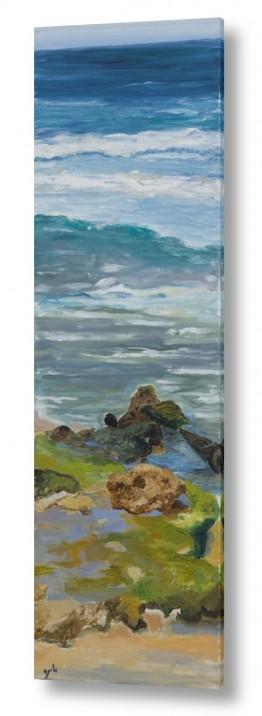 אסתר טל אסתר טל - ציורי שמן ריאליסטיים - ים | ים 1