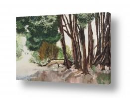 אסתר טל אסתר טל - ציורי שמן ריאליסטיים - עץ | חורשה