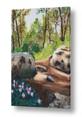 אסתר טל אסתר טל - ציורי שמן ריאליסטיים - צמחים | רקפות