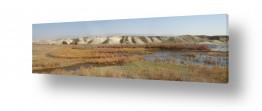 תמונות לפי נושאים בראשית   מים במדבר