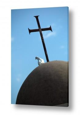 תמונות לפי נושאים דת | יונה וצלב
