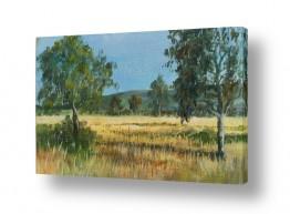 תמונות לפי נושאים עומק | עצים בשדה