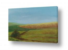 ציורים שמיים | שדה חרוש