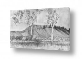 ציורים רישום | נוף מדברי
