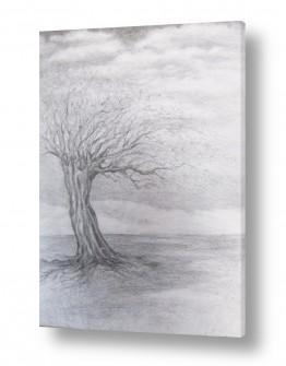 עץ שורש | רוח