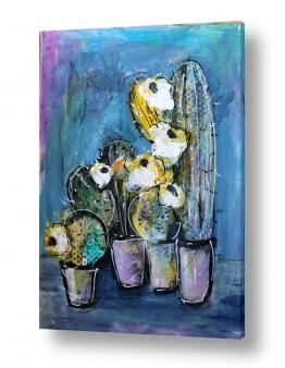 ציורים חני שפר | קקטוסים עם פרחים