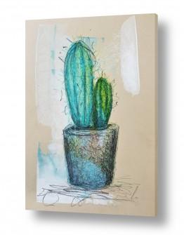 ציורים חני שפר | קקטוס