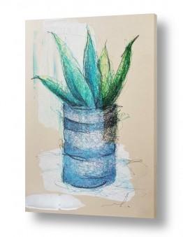 ציורים חני שפר | קקטוס בפחית