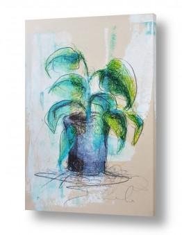ציורים חני שפר | עציץ