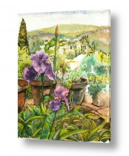 ציורים ציור | אירוסים ונוף
