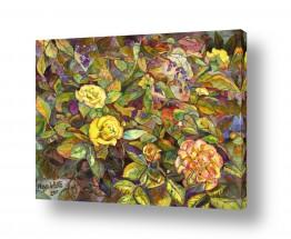 תמונות לפי נושאים צבעי אקריליק | ורדים צהובים