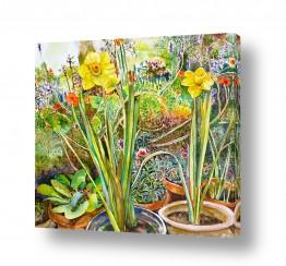 צומח פרחים | פריחה באביב
