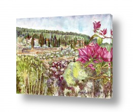 ערים בישראל ירושלים | פרח בוגונויליה עם נוף