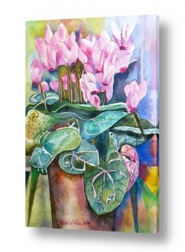ציורים טבע דומם | רקפות בעציץ